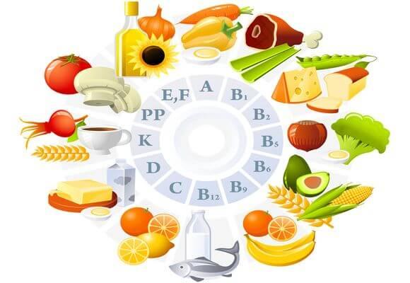Элементы питания человека