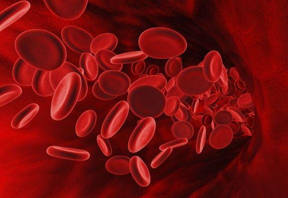 Тромбоз: виды, признаки, симптомы и лечение